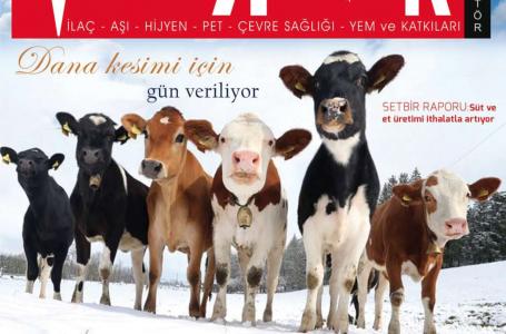 Ocak 2020 Dergi
