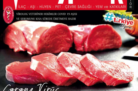 Nisan 2020 Dergi