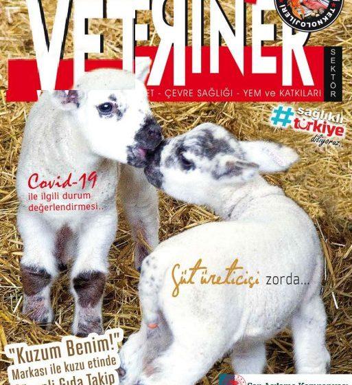 Eylül 2020 Dergi
